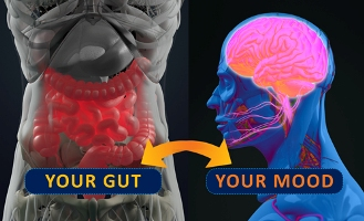 gut and mood microbiome